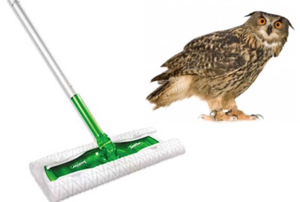 Swiffer and Owl